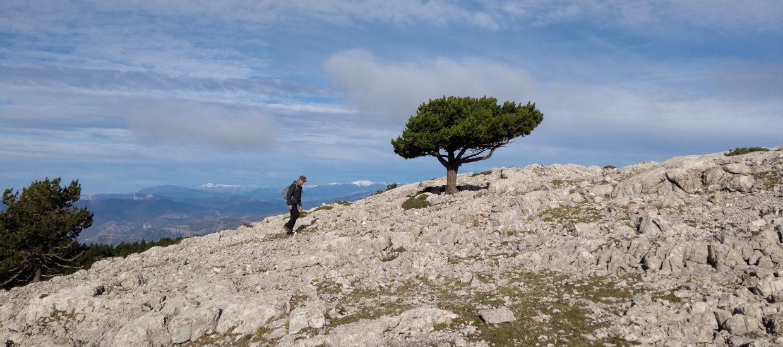 guided hiking trail boumort peak pyrenees